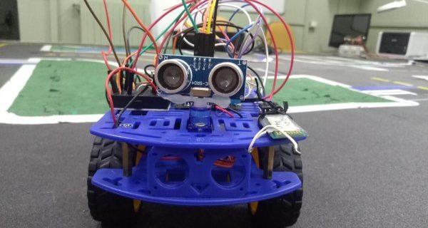 robet rover